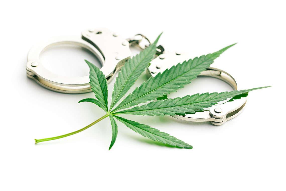 decriminalized_Daytona1