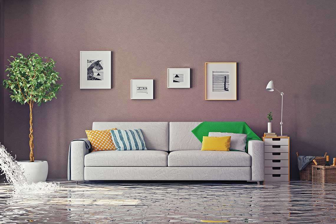 protect-home-from-flooding-st-petersburg-photo